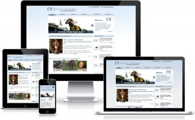 Example of a website we converted to a responsive design