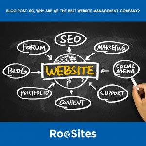 BLOG Post about the Best Website Management Company