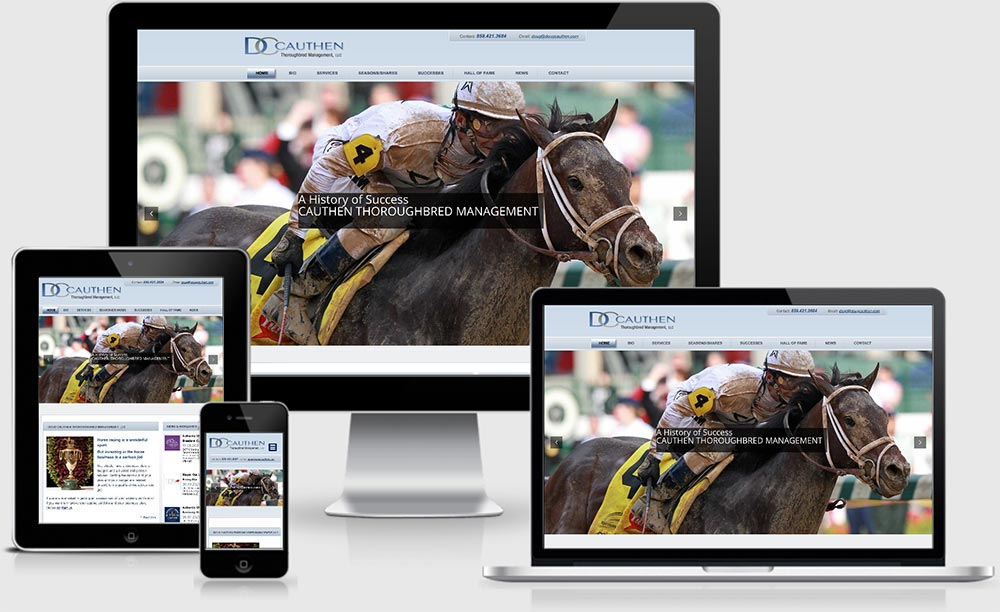 Responsive design conversion by RooSites